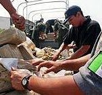mexique23102007-1