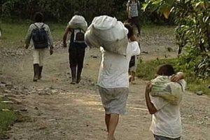 Populations déplacées