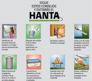 Consignes pour éviter le virus Hanta