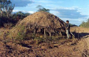 Maison ayoreo abandonnée©/Survival